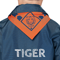 The Tiger Uniform